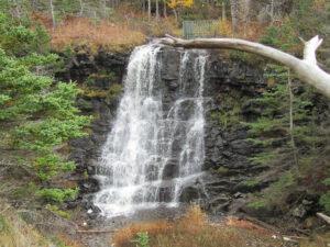 Delaps Cove Waterfall