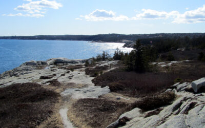 Herring Cove