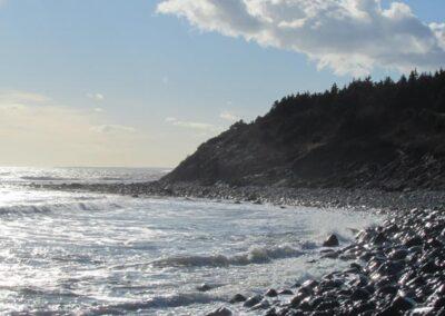 Lawrencetown Beach