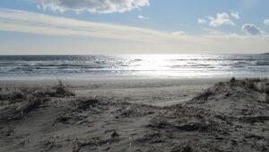 Conrad's Beach