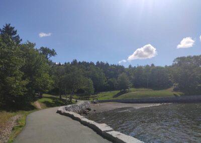 Dingle Tower Park