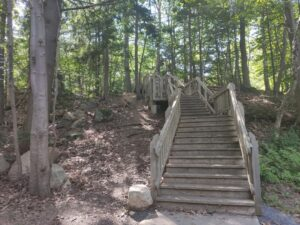Dingle Tower Trail to Frog Pond
