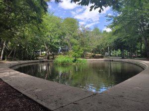 Hemlock Ravine - Julie's Pond