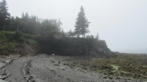 Ross Creek Beach