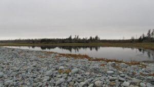 Silver Sands Pond