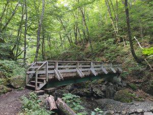 Usige Ban Falls Trail